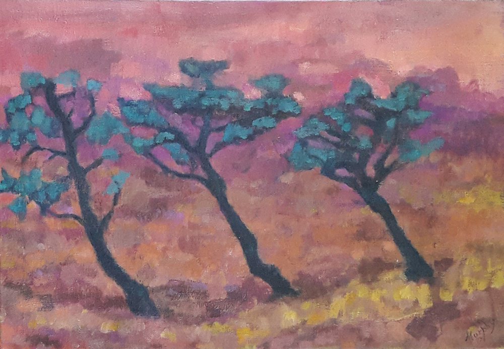 Three Cedars 65 x 46 cm oil on canavs - web